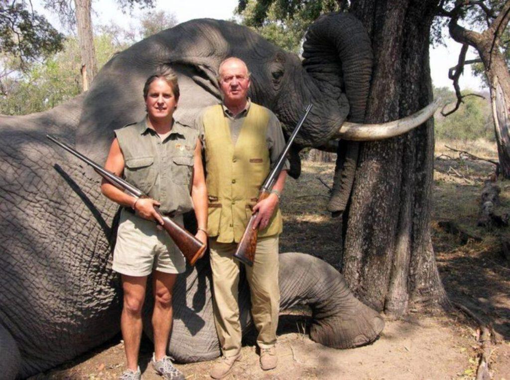 Cazador de elefantes