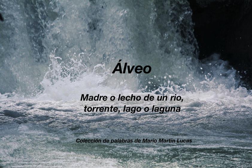Álveo